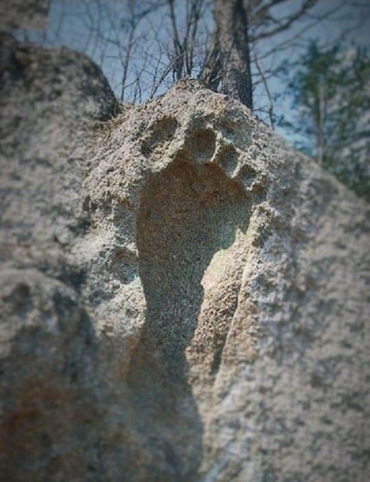 ayak izi define işareti