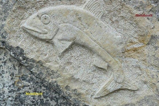 kabartma balık işareti